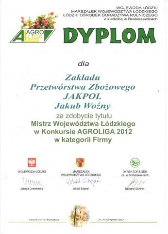 phoca-thumb-l-dyplom2orig